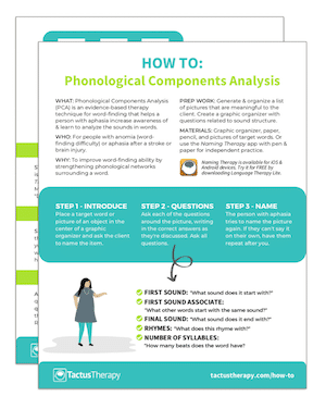 How To Phonological Components Analysis PCA handout preview