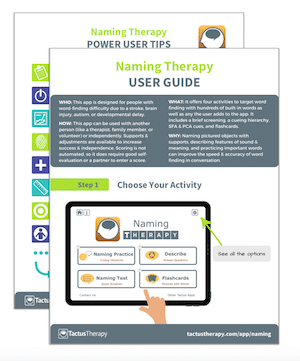 Naming Therapy User Guide Power Tips Preview