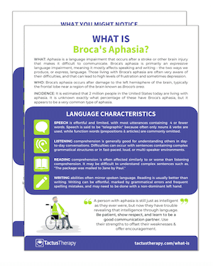 What is Broca's aphasia handout preview