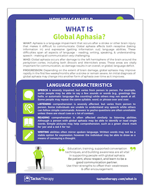 What is Global Aphasia handout preview