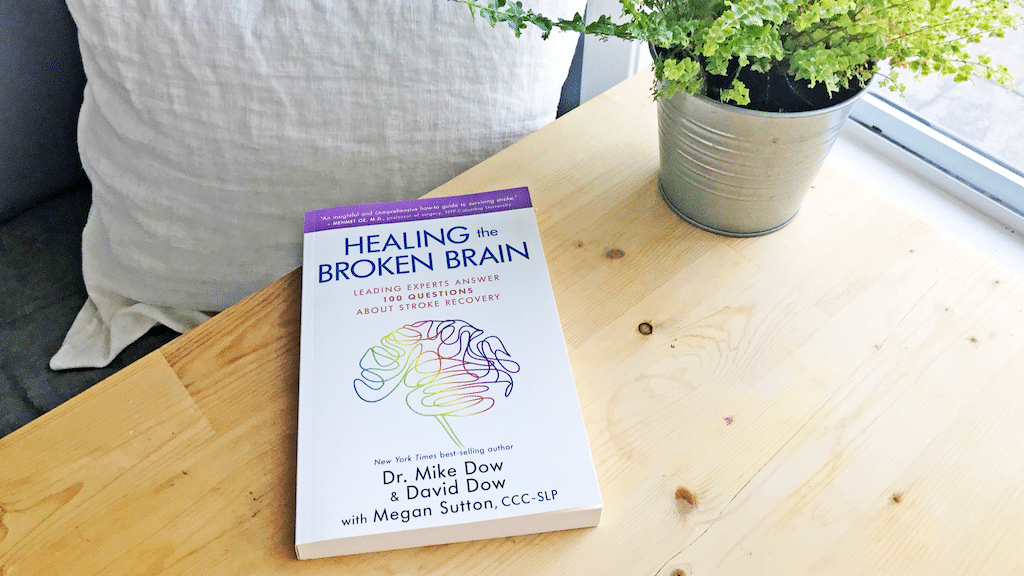 Healing the Broken Brain: An Essential Guide to Stroke Recovery