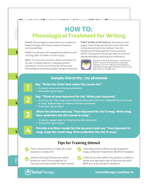 How To Phonological Treatment preview